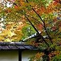 14苔寺庫裡-1.jpg