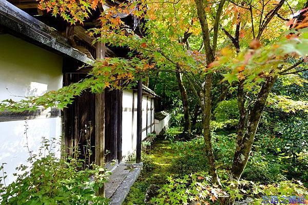 15苔寺庫裡-2.jpg