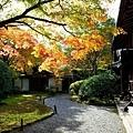 23苔寺觀音堂-1.jpg