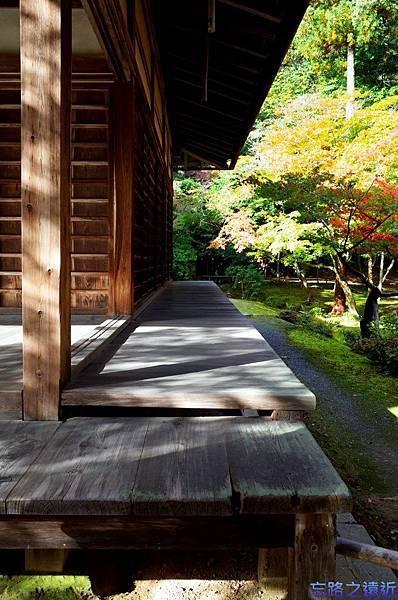 24苔寺觀音堂-2.jpg