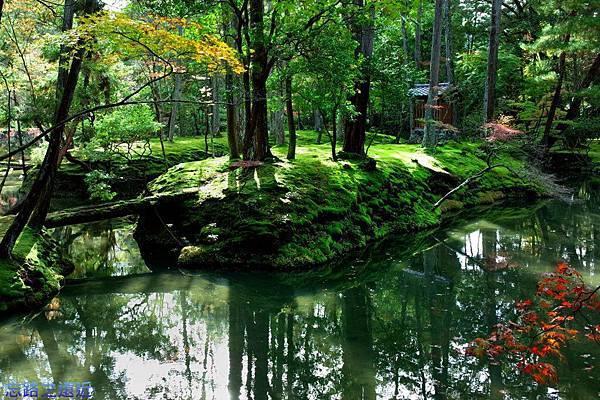 39苔寺黃金湖夕日之島-1.jpg