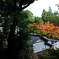 48苔寺向上關望庫裡.jpg