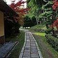 49苔寺休憩所旁小徑.jpg