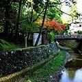 52西方寺川.jpg