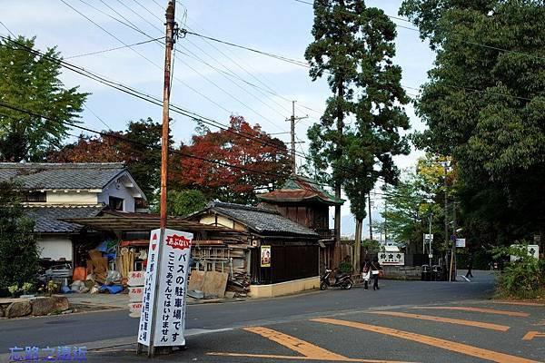 54苔寺巴士站往鈴蟲寺.jpg