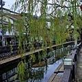20城崎溫泉街景-4.jpg