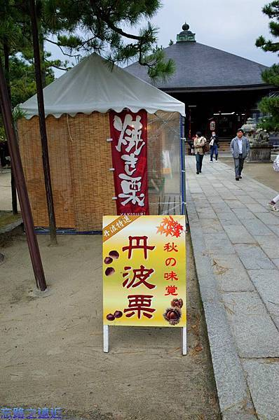 6天橋立智恩寺文殊堂前栗攤.jpg