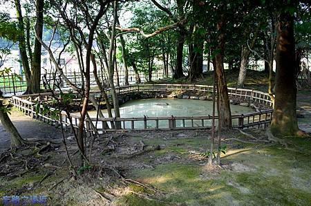 28觀世音寺水池.jpg