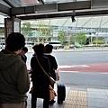 38利木津東京站搭車處-1.jpg