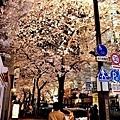 3櫻花通夜櫻-2.jpg