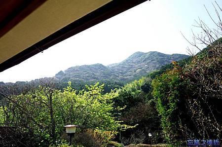 27河津石田屋離屋櫻望外庭園-2.jpg