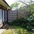 29河津石田屋離屋櫻庭園-1.jpg