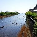 75河津川-1.jpg