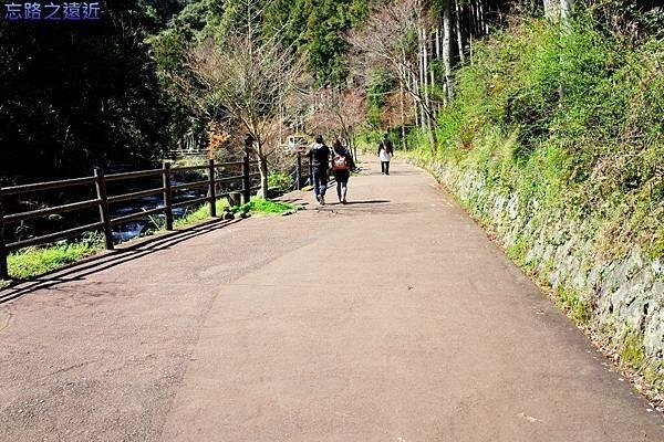 34河津七瀧蟹瀧前步道-1.jpg