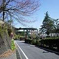 51河津七瀧loop橋-1.jpg