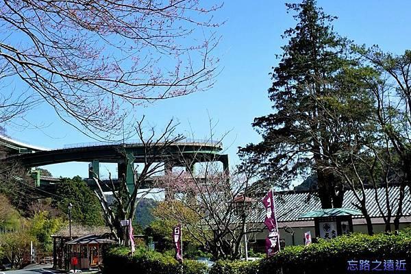 51河津七瀧loop橋-2.jpg