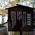 25修禪寺寒櫻說明牌.jpg