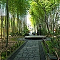 54修善寺竹林小徑-1.jpg