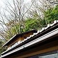 51枇杷客房橙陽台望屋頂山坡.jpg