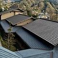 56枇杷三樓望二樓屋頂.jpg