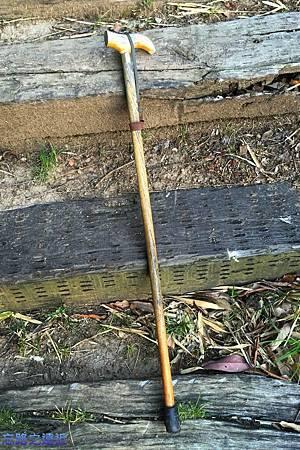65枇杷登山拐杖.jpg