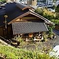 67枇杷登山道望枇杷.jpg