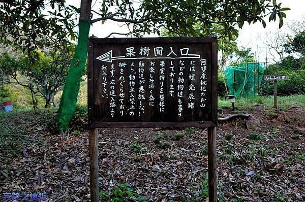 77枇杷果園告示牌-2.jpg