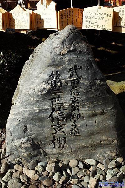 15淺間大社第二世信玄櫻標示.jpg