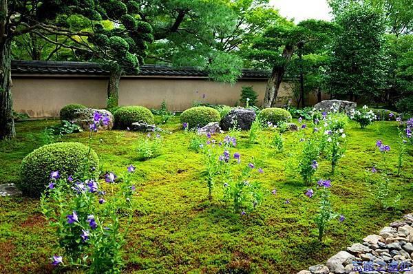 15天得院桔梗庭園-1.jpg
