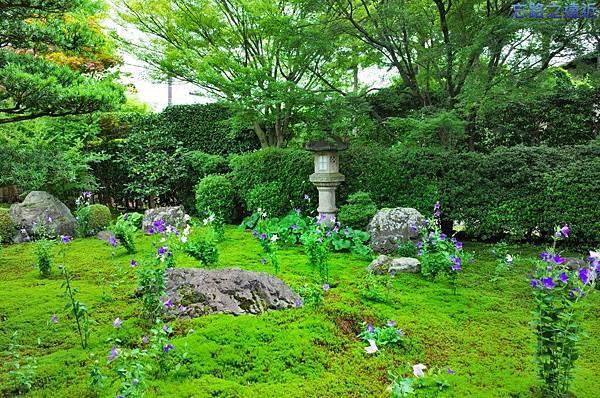 18天得院桔梗庭園-4.jpg