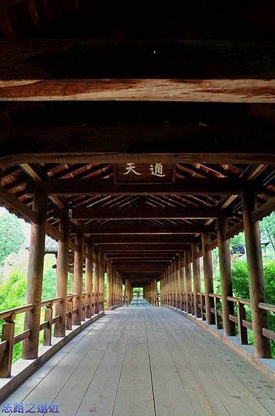 8東福寺通天橋.jpg