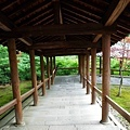 19東福寺東福僧堂階梯.jpg