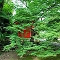 21東福寺愛染堂-2.jpg
