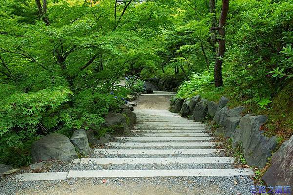 22東福寺庭園.jpg