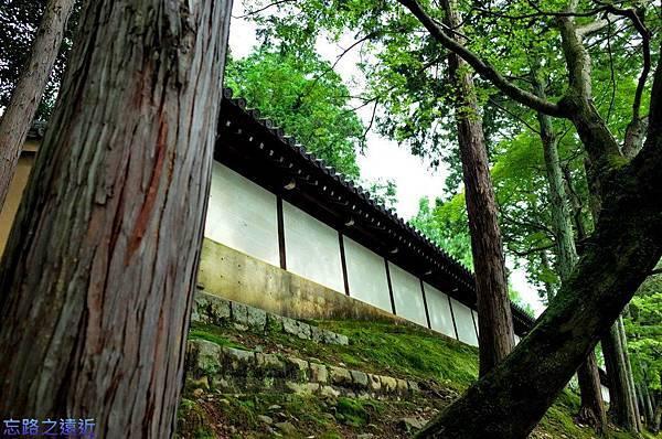 42東福寺圍牆