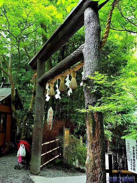 10野宮神社黑色鳥居-2.jpg