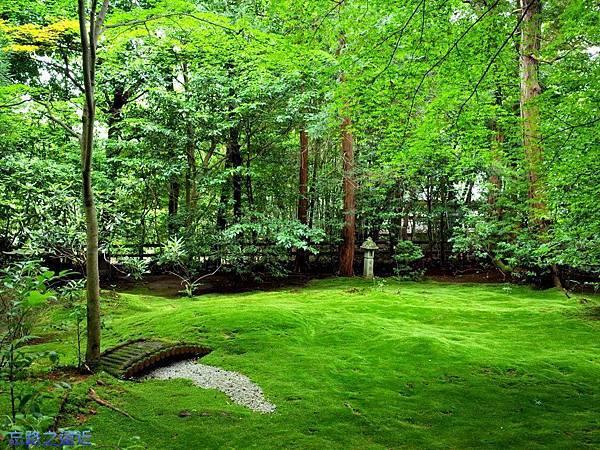 16野宮神社庭園.jpg