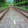 25竹林小徑火車軌道.jpg