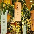 58定山溪ふる川許願樹.jpg