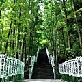 11熊野本宮大社入口階梯-1.jpg