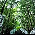 12熊野本宮大社入口階梯-2.jpg