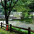 37川湯溫泉大塔川畔望吊橋.jpg