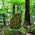 7飛瀧神社參道年尾歌碑.jpg