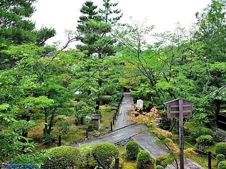 30清涼寺阿彌陀堂前庭園