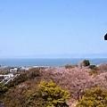 25彥根城天守閣望琵琶湖.jpg