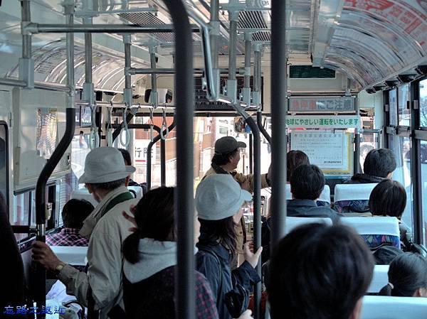 1海津大崎賞櫻巴士.jpg