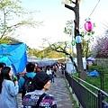 38大阪造幣局櫻花季攤販人潮.jpg