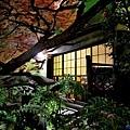 24蓬萊軒本店庭園.jpg