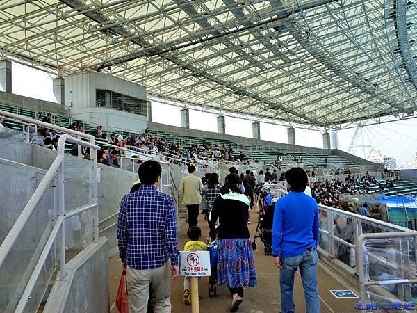 19名古屋水族館海豚表演場.jpg