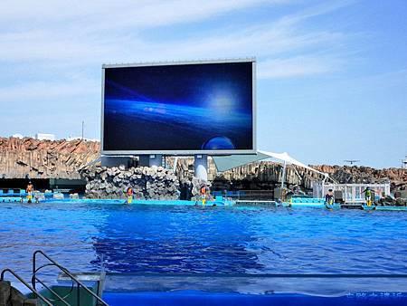 21名古屋水族館海豚表演-1.jpg